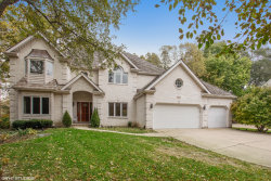 Photo of 107 Trappers Court, NAPERVILLE, IL 60565 (MLS # 10116164)