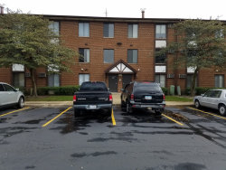 Photo of 173 Gregory Street, Unit Number 10, AURORA, IL 60504 (MLS # 10117701)