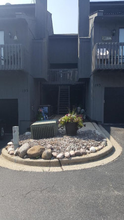 Photo of 193 Howard Court, Unit Number 2, FOX LAKE, IL 60020 (MLS # 10117895)