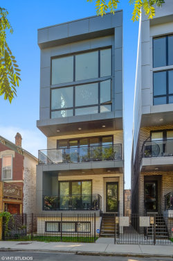 Photo of 1537 W Fry Street, Unit Number 2, CHICAGO, IL 60642 (MLS # 10125089)
