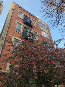 Photo of 2418 W Moffat Street, Unit Number 4, CHICAGO, IL 60647 (MLS # 10134759)