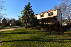 Photo of 172 Downing Road, BUFFALO GROVE, IL 60089 (MLS # 10139073)