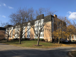 Photo of 200 Lake Boulevard, Unit Number 408, BUFFALO GROVE, IL 60089 (MLS # 10139961)
