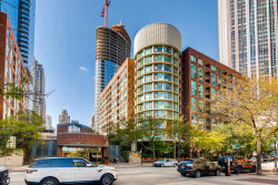 Photo of 480 N Mcclurg Court, Unit Number 313, CHICAGO, IL 60611 (MLS # 10141832)