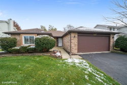 Photo of 248 Westbrook Circle, NAPERVILLE, IL 60565 (MLS # 10144310)