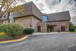 Photo of 907 S Williams Street, Unit Number 303, WESTMONT, IL 60559 (MLS # 10146916)