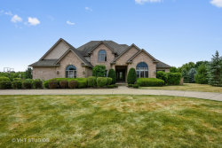 Photo of 10956 Royal Porthcawl Drive, NAPERVILLE, IL 60564 (MLS # 10150524)