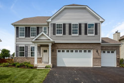 Photo of 13620 Arborview Drive, PLAINFIELD, IL 60585 (MLS # 10151884)