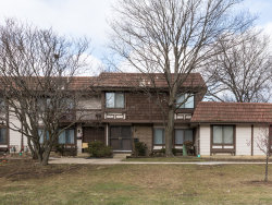 Photo of 1204 Court H, HANOVER PARK, IL 60133 (MLS # 10153316)