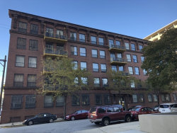 Photo of 120 E Cullerton Street, Unit Number 302, CHICAGO, IL 60616 (MLS # 10155112)