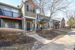 Photo of 1529 Raymond Drive, Unit Number 204, NAPERVILLE, IL 60563 (MLS # 10155385)