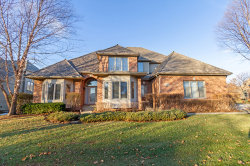 Photo of 532 Waters Edge Drive, SOUTH ELGIN, IL 60177 (MLS # 10166376)