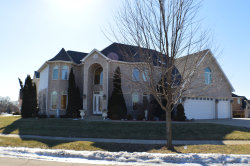 Photo of 1255 W Flamingo Drive, ROSELLE, IL 60172 (MLS # 10169889)