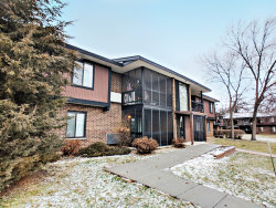 Photo of 4716 W Northfox Lane, Unit Number 2, MCHENRY, IL 60050 (MLS # 10170249)