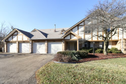 Photo of 9039 W Somerset Court, Unit Number 7, ORLAND PARK, IL 60462 (MLS # 10172355)