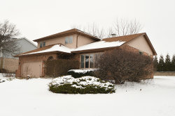Photo of 14250 Creek Crossing Drive, ORLAND PARK, IL 60467 (MLS # 10249466)
