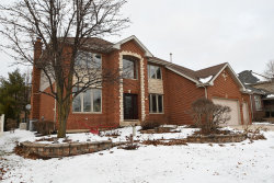 Photo of 10440 Great Egret Drive, ORLAND PARK, IL 60467 (MLS # 10251656)