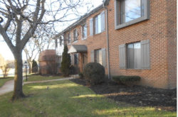 Photo of 71 E Parliament Drive, Unit Number D, PALOS HEIGHTS, IL 60463 (MLS # 10251852)