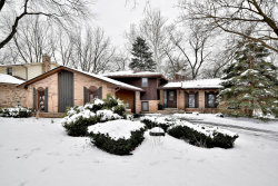 Photo of 8111 Winter Circle Drive, DOWNERS GROVE, IL 60516 (MLS # 10251986)