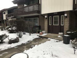 Photo of 15809 Orlan Brook Drive, Unit Number 42, ORLAND PARK, IL 60462 (MLS # 10253429)