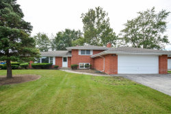 Photo of 6711 W Shiawassie Drive, PALOS HEIGHTS, IL 60463 (MLS # 10255719)