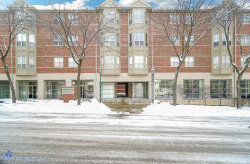 Photo of 57 E Hattendorf Avenue, Unit Number 301, ROSELLE, IL 60172 (MLS # 10258677)