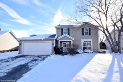 Photo of 313 Magnolia Drive, NORTH AURORA, IL 60542 (MLS # 10260858)