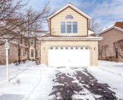 Photo of 9 Moorings Drive, PALOS HEIGHTS, IL 60463 (MLS # 10261484)