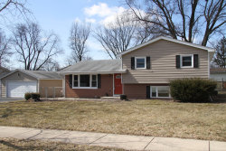 Photo of 6104 Puffer Road, DOWNERS GROVE, IL 60516 (MLS # 10262384)