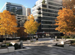 Photo of 130 S Canal Street, Unit Number 9B, CHICAGO, IL 60606 (MLS # 10263105)