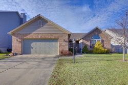 Photo of 1405 N Brookhaven Drive, MAHOMET, IL 61853 (MLS # 10264991)