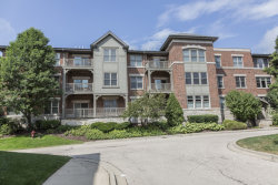 Photo of 267 E Railroad Avenue, Unit Number 102, BARTLETT, IL 60103 (MLS # 10271076)
