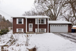 Photo of 993 Meadow Lane, ELGIN, IL 60123 (MLS # 10272130)