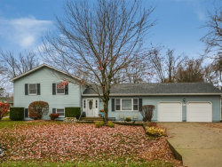 Photo of 1926 Lakeview Street, JOHNSBURG, IL 60051 (MLS # 10273191)