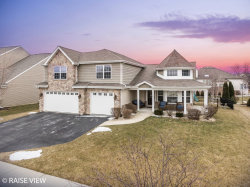 Photo of 24951 Thornberry Drive, PLAINFIELD, IL 60544 (MLS # 10274691)