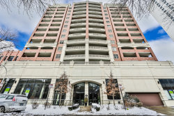 Photo of 828 W Grace Street, Unit Number 1106, CHICAGO, IL 60613 (MLS # 10277524)