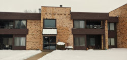 Photo of 1413 N Sterling Avenue, Unit Number 204, PALATINE, IL 60067 (MLS # 10277885)