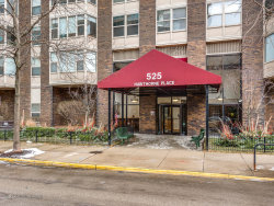 Photo of 525 W Hawthorne Place, Unit Number 2902, CHICAGO, IL 60657 (MLS # 10278132)