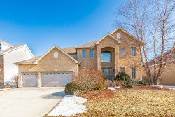 Photo of 179 Amherst Circle, OSWEGO, IL 60543 (MLS # 10279225)