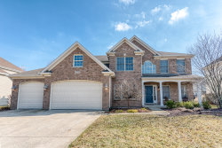 Photo of 25735 Meadowland Circle, PLAINFIELD, IL 60585 (MLS # 10301126)
