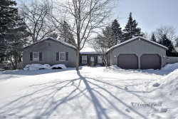 Photo of 3403 W Fairway Drive, MCHENRY, IL 60050 (MLS # 10303454)