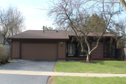 Photo of 545 Sequoia Trail, ROSELLE, IL 60172 (MLS # 10305472)