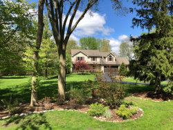 Photo of 31 Chippewa Drive, OSWEGO, IL 60543 (MLS # 10307337)