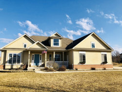 Photo of 8555 Shire Court, FRANKFORT, IL 60423 (MLS # 10308503)