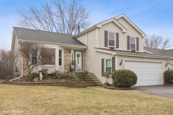 Photo of 983 Shady Tree Lane, WHEELING, IL 60090 (MLS # 10310274)