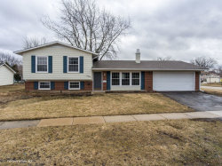 Photo of 8129 N Applewood Court, HANOVER PARK, IL 60133 (MLS # 10310292)