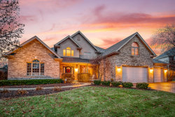 Photo of 22380 Prairie Trail Lane, FRANKFORT, IL 60423 (MLS # 10311330)