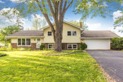 Photo of 28W744 Wagner Road, NAPERVILLE, IL 60564 (MLS # 10311789)