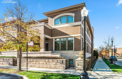 Photo of 1400 S Emerald Street, CHICAGO, IL 60607 (MLS # 10316812)