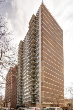 Photo of 2740 N Pine Grove Avenue, Unit Number 4G, CHICAGO, IL 60614 (MLS # 10316966)